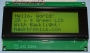 20 x 4 LCD Black on Green